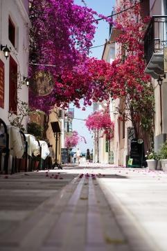Greece 2013 Nafplio WIS-6